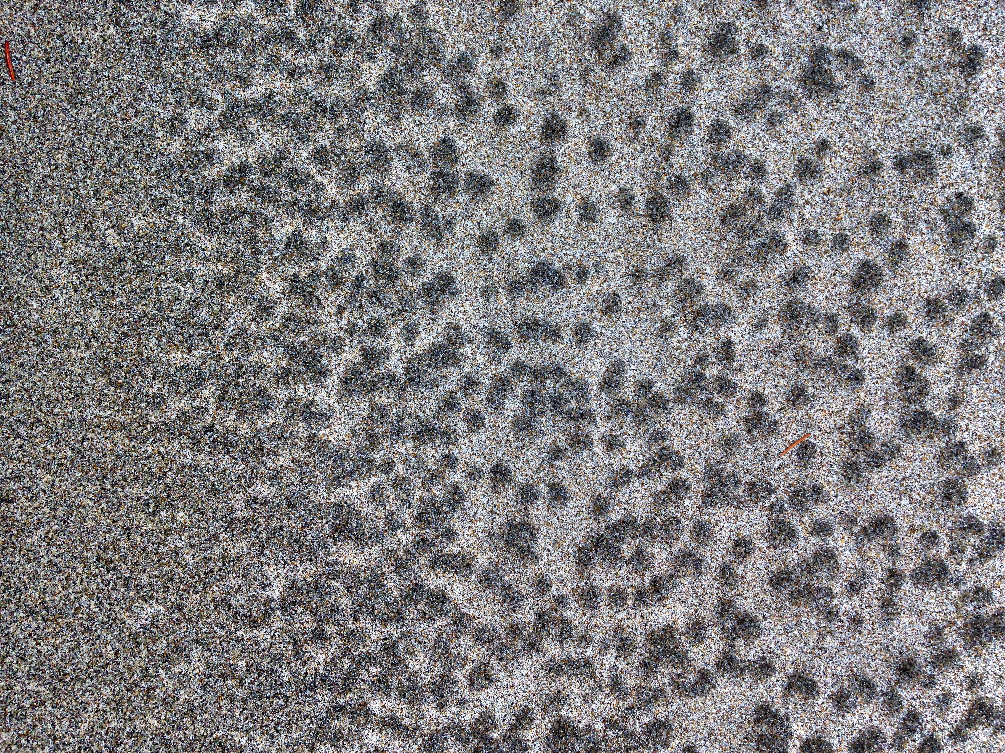 Stippled sand patterns on the Oregon coast