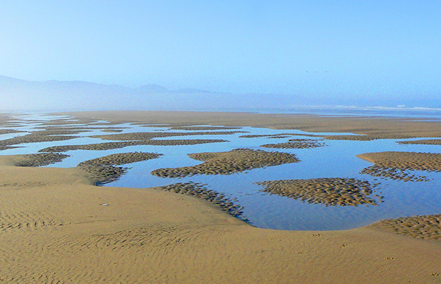 Sand patterns on the Oregon coast.