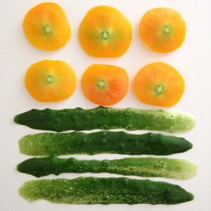 pattern with tomatoes and cucumber peels