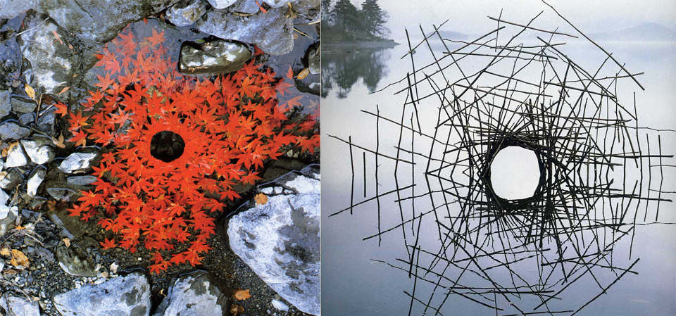 Andy Goldsworthy leaf and twig land art