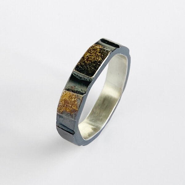 Sterling silver ring with gold dust tiles. Jane Pellicciotto